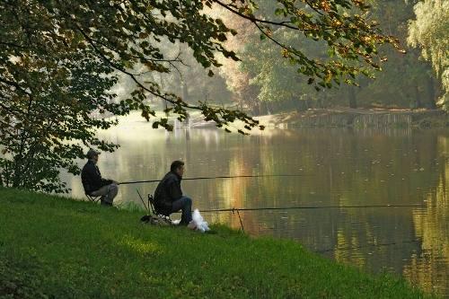 Идеальная погода для удачной рыбалки