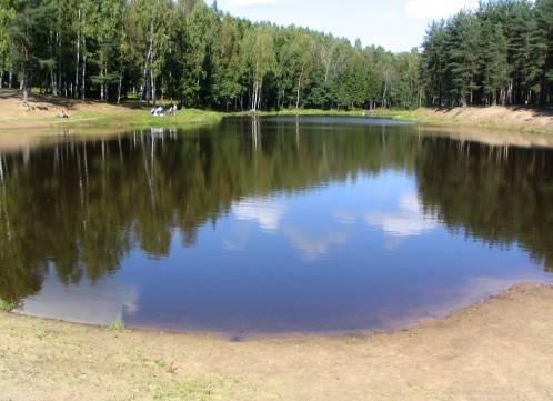 Понижение уровня воды в водоеме