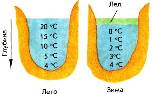 Температура воды в водоеме в зависимости от времени года