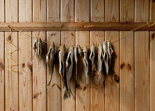 Сушка просоленной рыбы