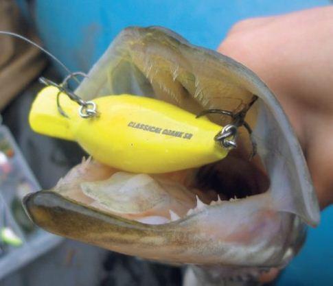 Воблер марки крэнк для рыбной ловли