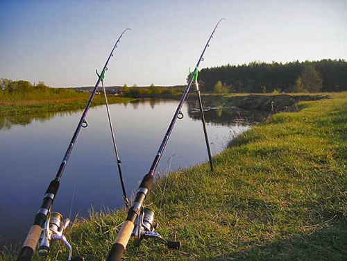 Оптимальное количество удочек для рыбалки 2-3 штуки