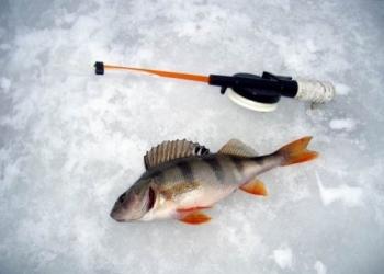 Рыбалка зимой на льду