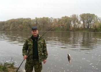Рыбалка на Волге в разные времена года