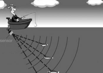 Рыболовные эхолоты: виды, особенности и преимущества