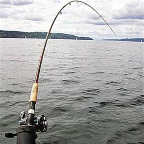 наживка для рыбной ловли купить в балаково