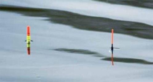 Ловля на поплавочную удочку в мутной воде
