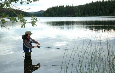 Выбор места рыбной ловли