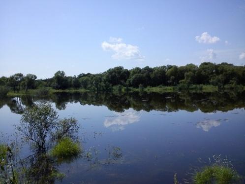 Увеличение уровня воды в реке летом