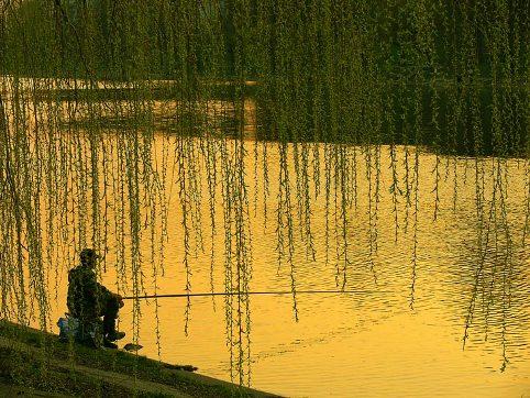 Давление для рыбалки