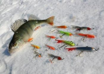 Ловля рыбы на балансир. Способы и техника зимней рыбалки