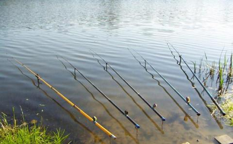 Поплавочные удочки для рыбной ловли