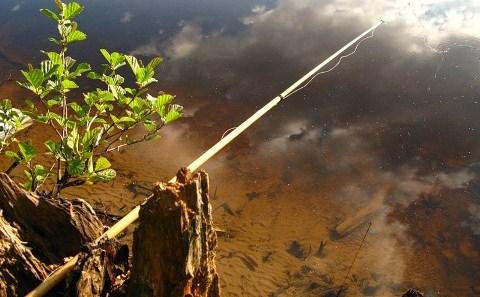 Штекерная удилище для поплавочной удочки