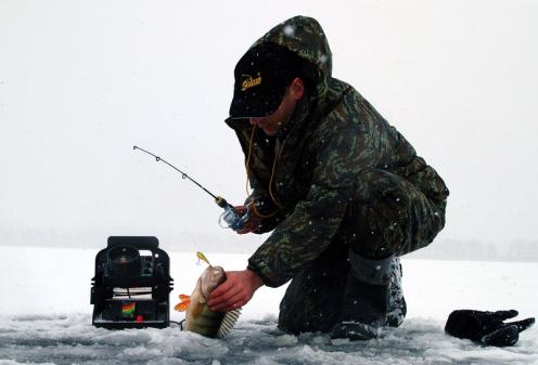 Рыба, пойманная из лунки на балансир