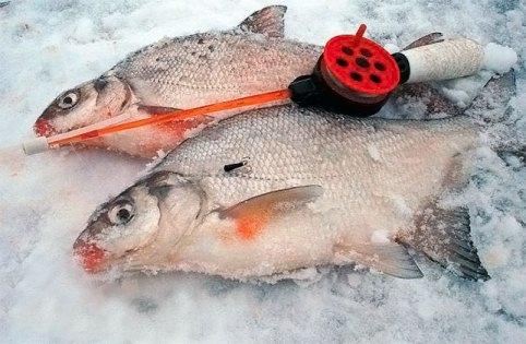 Удобный удильник для рыбной ловли
