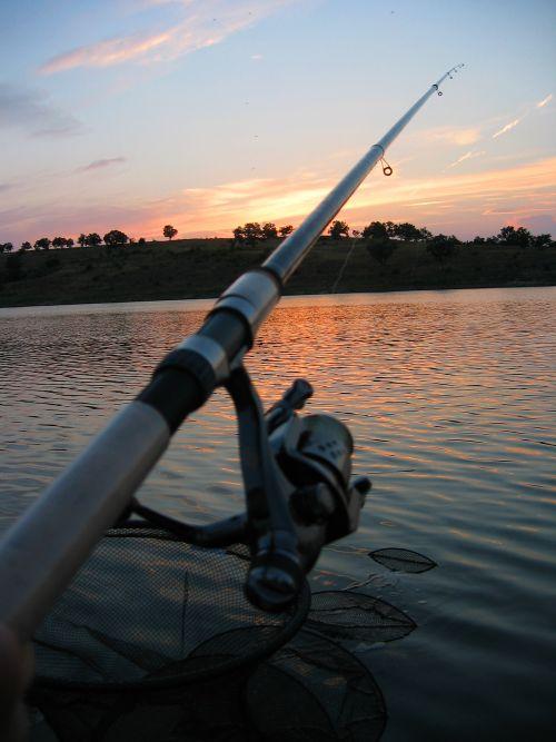 Болонская удочка для рыбной ловли