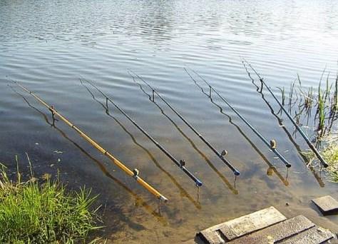 Уклеечные удилища для рыбной ловли