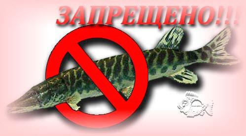 Запрет на рыбалку в конкретном месте