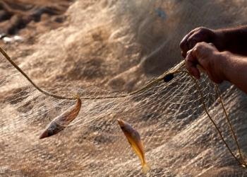 Рыболовные сети – обязательный атрибут промышленной рыбалки