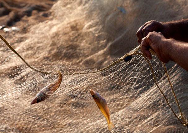 Если вы взяли на рыбалку сети - вас ждет большая рыба