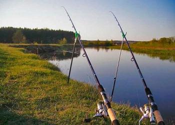 Удочки для рыбалки: как их выбирать