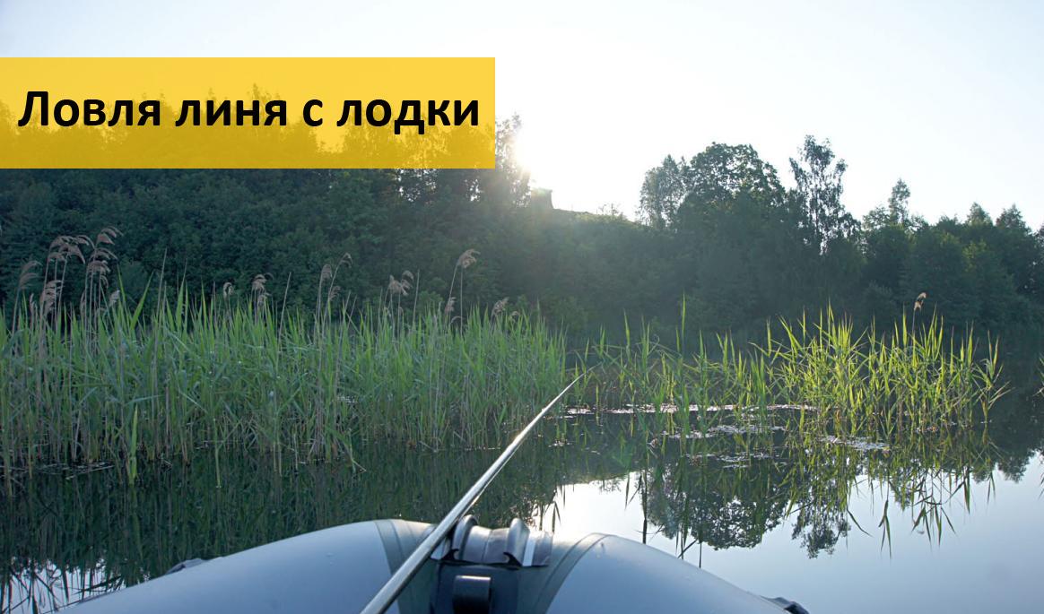 беларусь. ловля линя