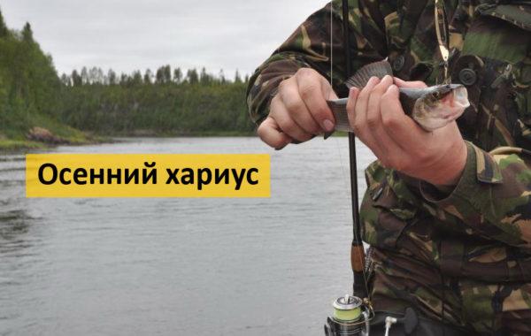 Осенний хариус в Сибири