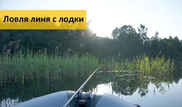 Ловля линя с лодки