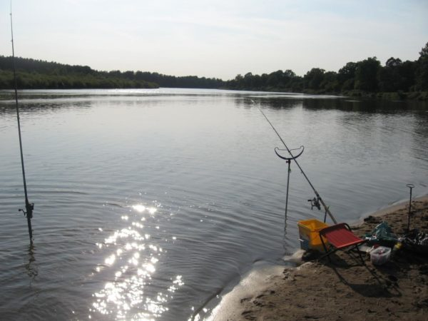 Положение фидера на реке