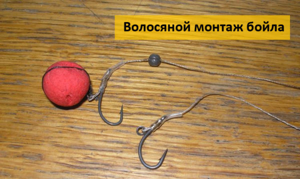 Волосяной монтаж бойла для ловли карпа