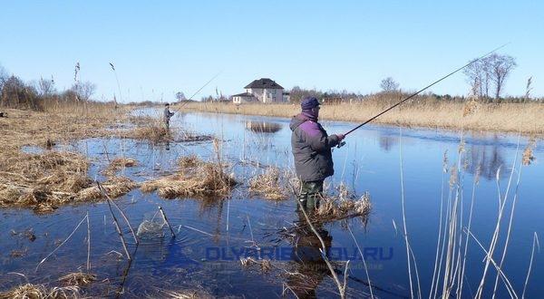 Секреты рыбалки на карася весной