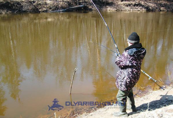 Подробно о весенней ловле на фидер