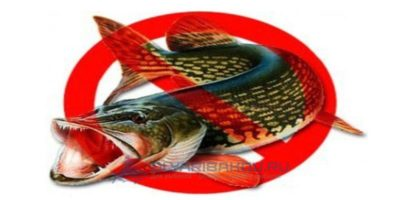 отлов зараженной рыбы;