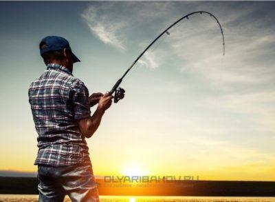 Эффективность применения аттрактантов и ароматизаторов при рыбалке на карпа/сазана