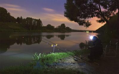 Выбор и подготовка места начной рыбалки