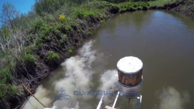 В водоем вносят негашеную и хлорную известь