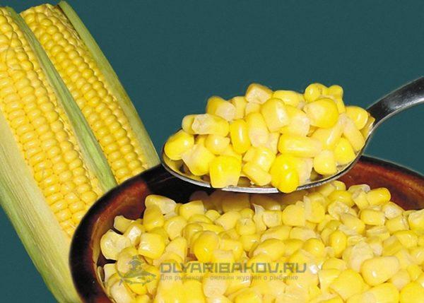 Как правильно насадить кукурузу на крючок